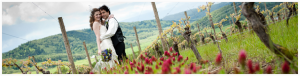Wine Country Weddings 1