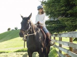 Oregon Wine Country on Horseback 1