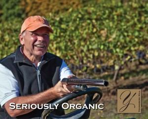 Seriously Organic Vineyard Birds (Part 1 of 2) 1