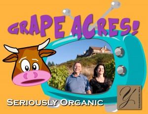 Green Acres 1