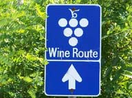 Wine Tour Oregon 1