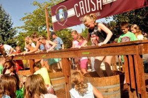 Top 5 Festivals for Fall Wine Events 1