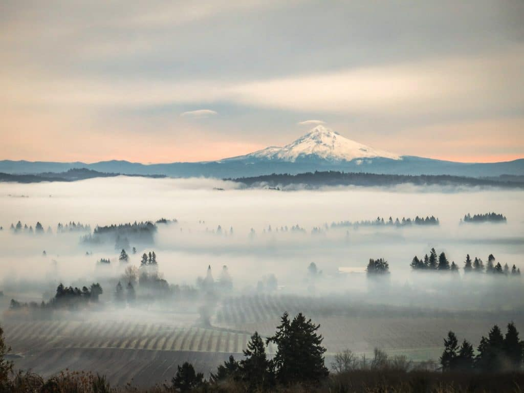 What You Need to Know About Willamette Valley Weather and
