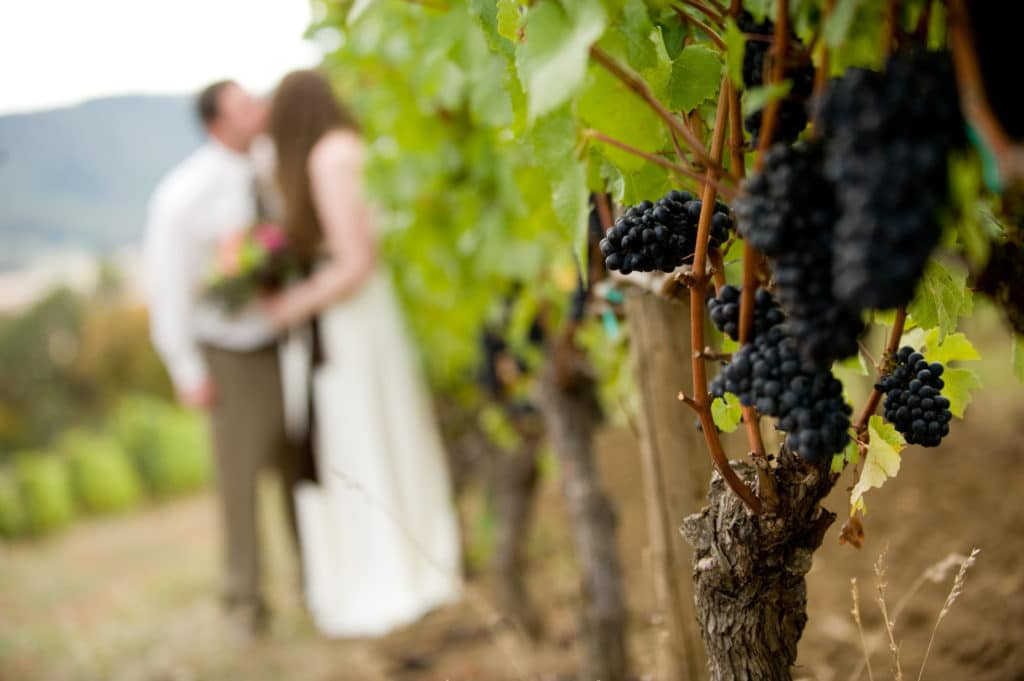 Consider a vineyard wedding at our Willamette Valley Bed and Breakfast.